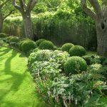Runda former, trädgård, frodigt, trädgårdsarkitektur, parkmiljö