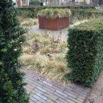 Insynsskyddat, snygga häckar, snygg trädgårdsdesign, bra växtkombination