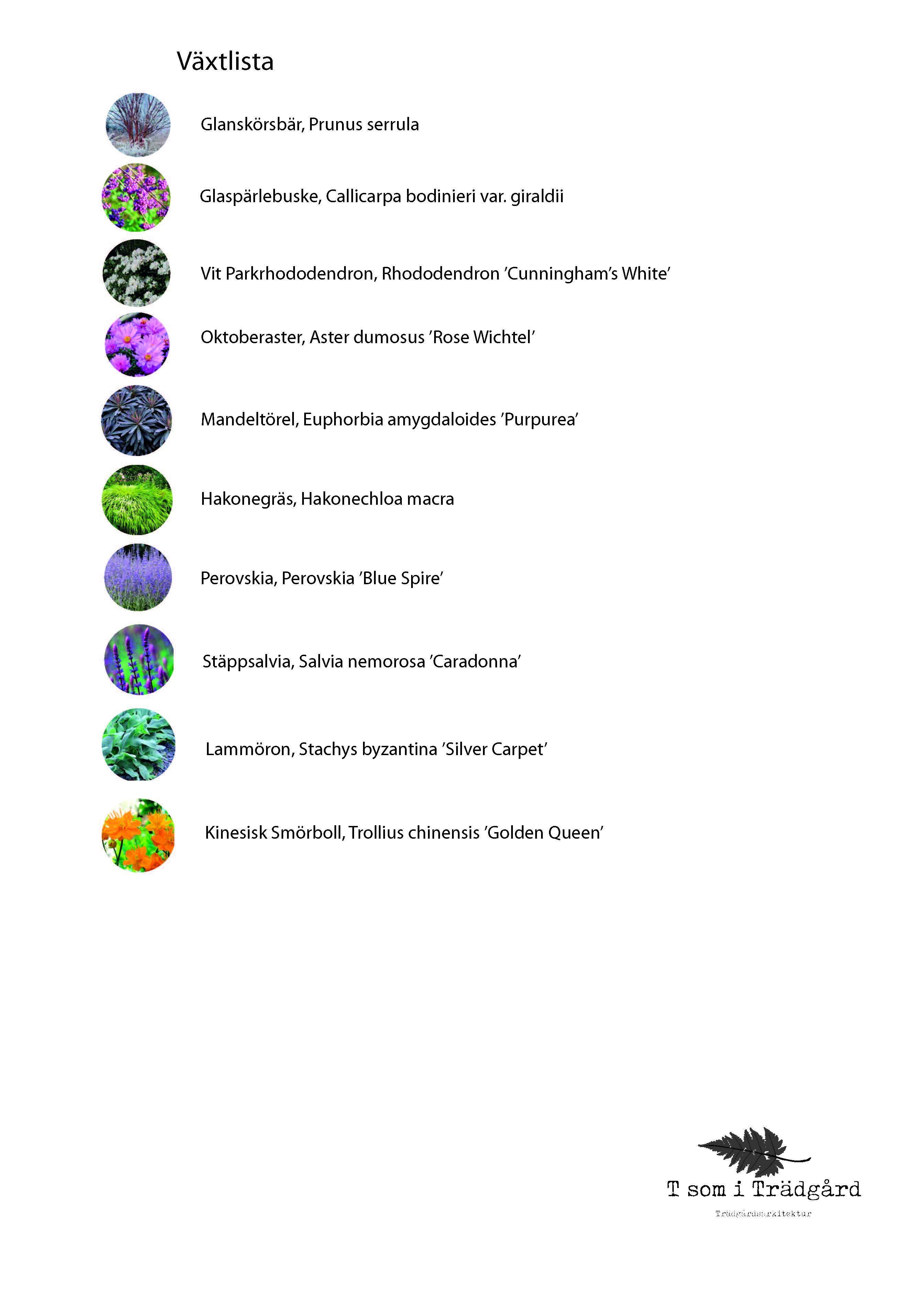 Växtlista, Trädgårdsarkitektur, Växter, Trädgårdsdesign