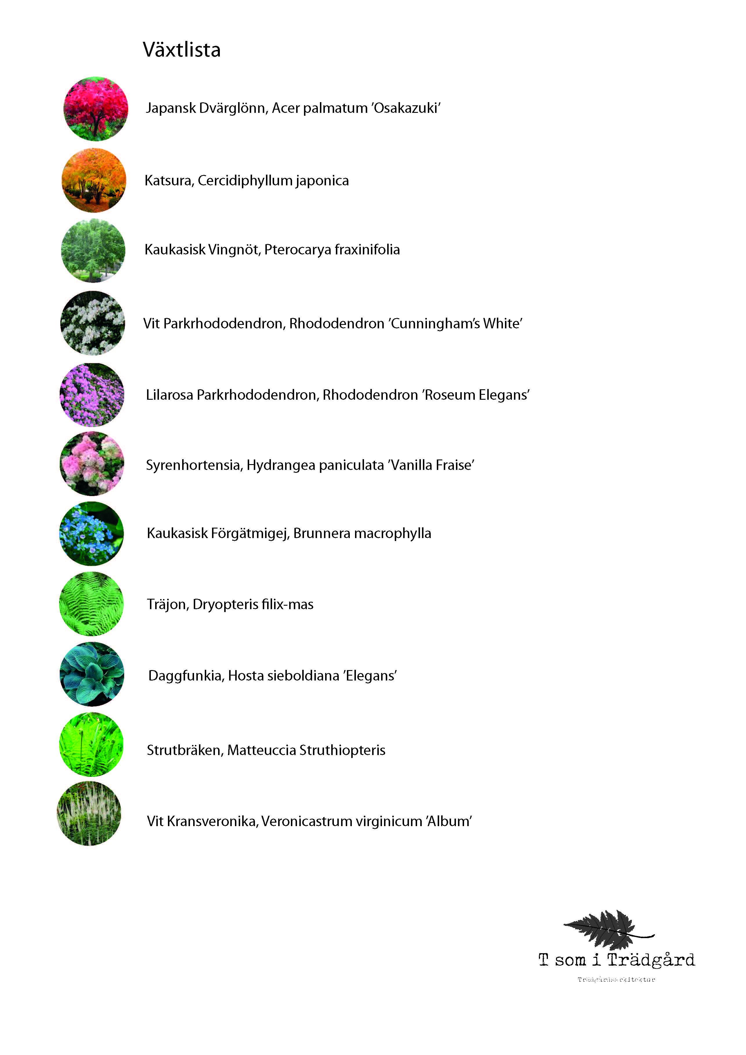 Växtlista, växter, Trädgårdsdesign, Trädgårdsarkitektur